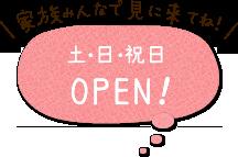 土日祝OPEN!